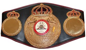 Boxing Champions Belt