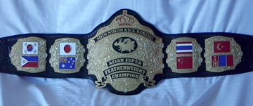 kickboxing champion belt